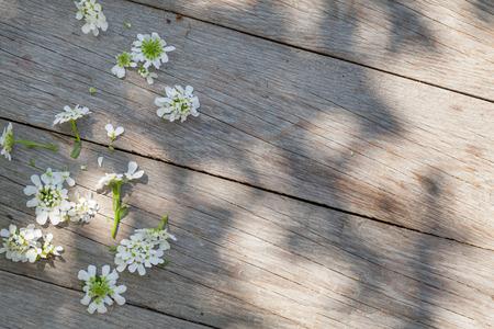 dia soleado: Mesa de jardín de madera en día soleado Foto de archivo