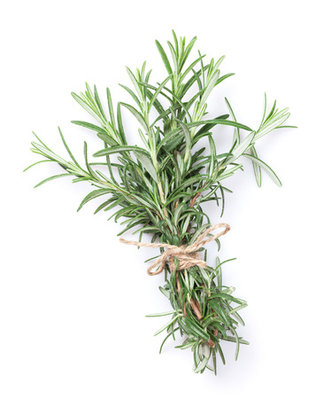 green herbs: Fresh garden herbs, Rosemary. Isolated on white background