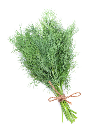dill: Fresh garden herbs, Dill. Isolated on white background Stock Photo