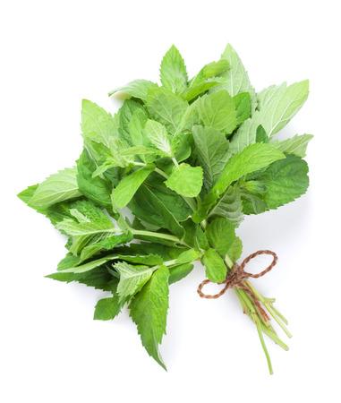 menta: hierbas arom�ticas frescas, menta. Aislado en el fondo blanco Foto de archivo