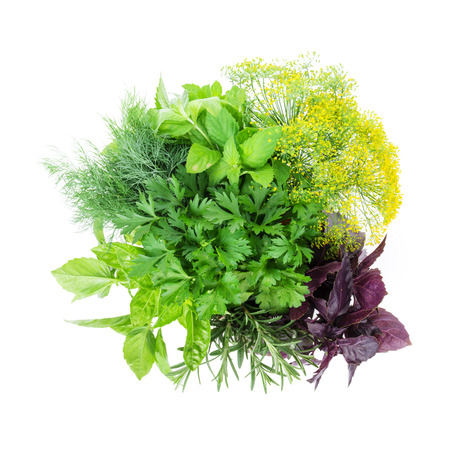 Fresh garden herbs. Isolated on white background Фото со стока