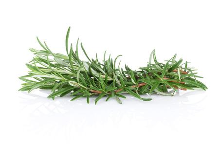 aromatic: Fresh garden herbs. Rosemary. Isolated on white background