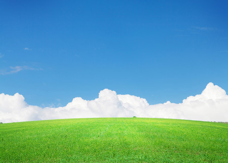 horizonte: Green grass field and blue sky with clouds on horizon background