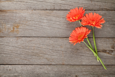 Wooden background with orange gerbera flowers and copy space