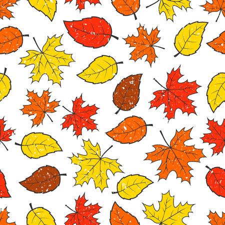 hojas de colores: Incons�til del oto�o colorido deja patr�n de fondo