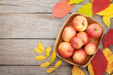 above: Apples in bowl and colorful autumn leaves on woden background with copy space Stock Photo