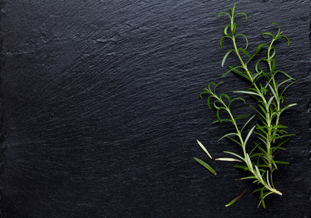 black stones: Rosemary herb on stone table. Top view with copy space Stock Photo