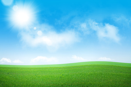 blue green background: Green grass field and blue sky background