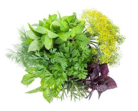herbs white background: Fresh garden herbs. Isolated on white background Stock Photo