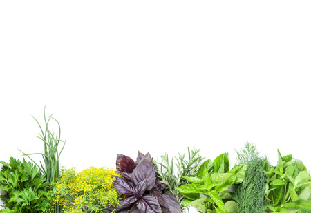 Fresh garden herbs. Isolated on white background Imagens