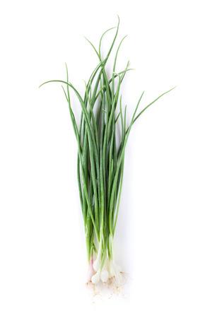 cebolla blanca: Hierbas frescas del jardín. Cebolleta. Aislado en el fondo blanco Foto de archivo