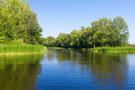 blue summer sky: Summer landscape with forest, lake and blue sky
