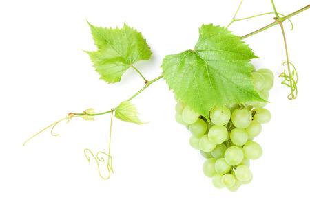hojas parra: Racimo de uvas blancas con hojas. Aislado en el fondo blanco Foto de archivo