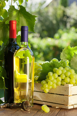 food and wine: White and red wine bottles, vine and bunch of grapes on garden table Stock Photo