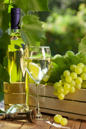 white wine: White wine bottle, glass, vine and bunch of grapes on garden table