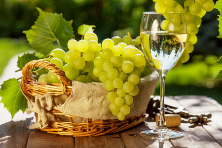 White wine glass, vine and bunch of grapes on garden table Stockfoto