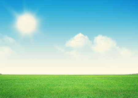 grass and sky: Endless green grass field and blue sky with clouds background