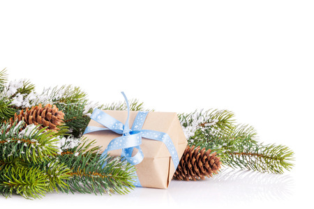christmas tree branch: Christmas tree branch with snow and gift box. Isolated on white background with copy space
