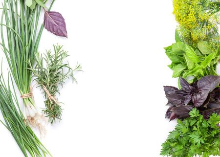 herbs: Fresh garden herbs. Isolated on white background Stock Photo