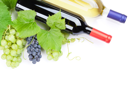 white grape: Bunch of red and white grapes and wine bottles. Isolated on white background with copy space