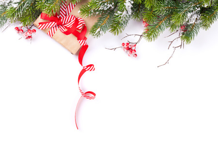 christmas christmas tree: Christmas tree branch with snow and gift box. Isolated on white background with copy space