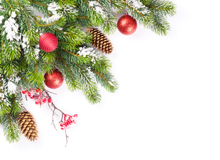 white space: Christmas tree branch with snow and baubles. Isolated on white background with copy space