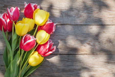Colorful tulips on sunny garden table. Top view with copy space
