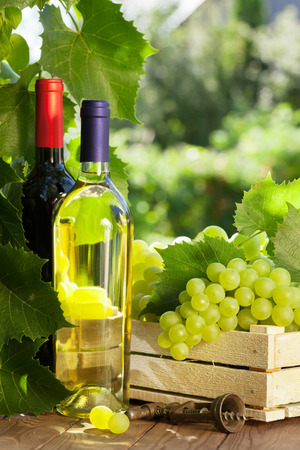 glass table: White and red wine bottle, glass, vine and bunch of grapes on garden table Stock Photo