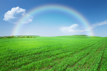 Green grass field, blue sky with clouds and rainbow background