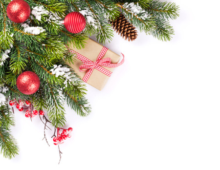 Christmas tree branch and gift box. Isolated on white background