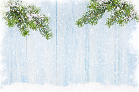 snow cone: Christmas fir tree in snow in front of wooden wall. View with copy space