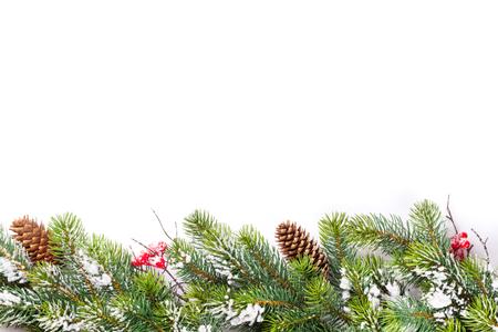Weihnachtsbaum Zweig mit Schnee. Isoliert auf weißem Hintergrund mit Kopie Raum