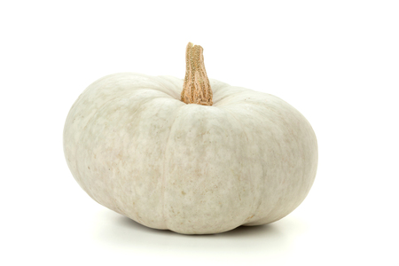 Small white pumpkin. Isolated on white background Stock Photo
