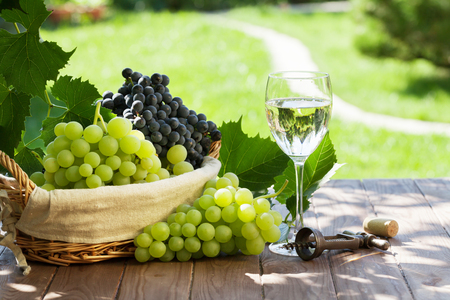 white wine: White wine glass, red and white grape on garden table