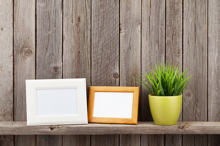 plant design: Blank photo frames and plant on shelf in front of wooden wall