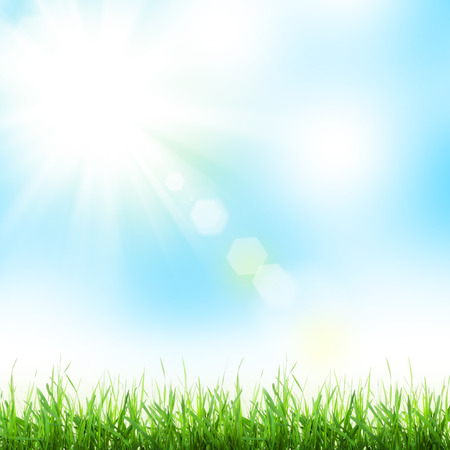 sky sun: Abstract sunny spring background with grass