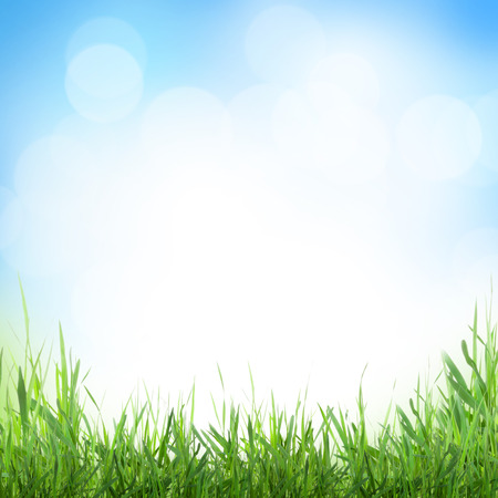 Abstract sunny spring background with grass and bokeh