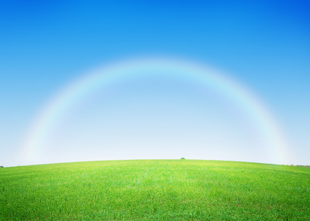 grass and sky: Green grass field and deep blue sky with rainbow background
