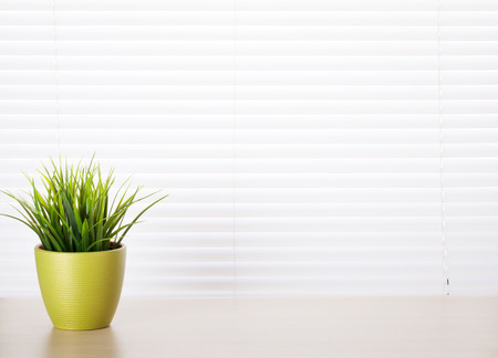 wood blinds: Office workplace with potted plant on wood desk table in front of window with blinds