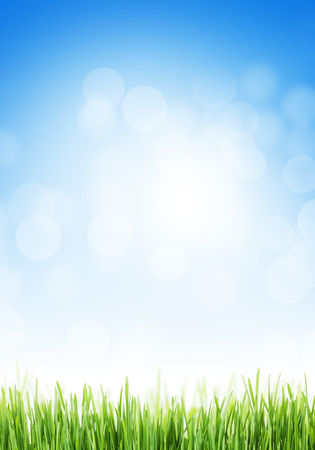 grass and sky: Abstract background with grass and sky