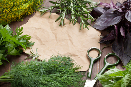 seasoning: Fresh garden herbs and piece of paper for your recipes on wooden table. Top view with copy space