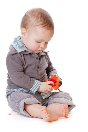 Small baby holding orange flower. Isolated on white photo