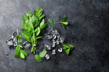 Mint and ice on stone table. Top view with copy space Foto de archivo