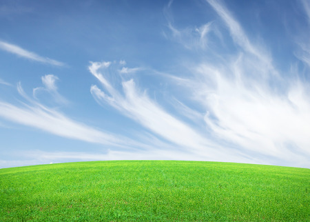 lawn grass: Green grass field and blue sky with clouds background