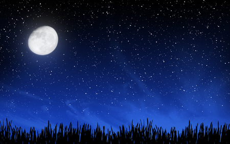 stars night: Deep night sky with many stars and moon over grass background Stock Photo