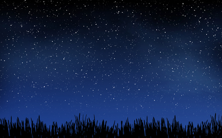 sky and grass: Deep night sky with many stars and grass background