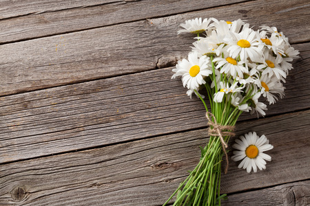 Daisy chamomile flowers on wooden garden table. Top view with copy space