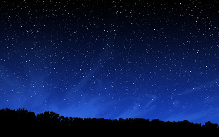 Deep night sky with many stars over forest background