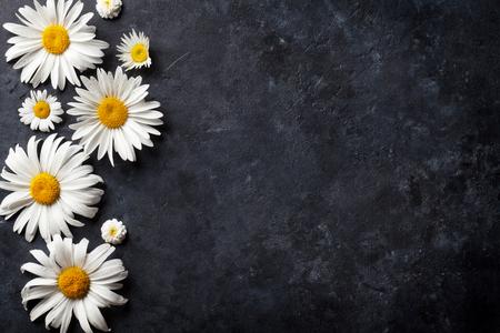 돌 테이블 배경 위에 정원 카모마일 꽃입니다. 복사 공간이있는 배경 스톡 콘텐츠