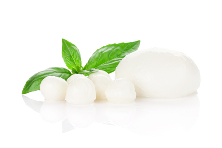 basil herb: Mozzarella cheese and basil herb leaves. Isolated on white background Stock Photo